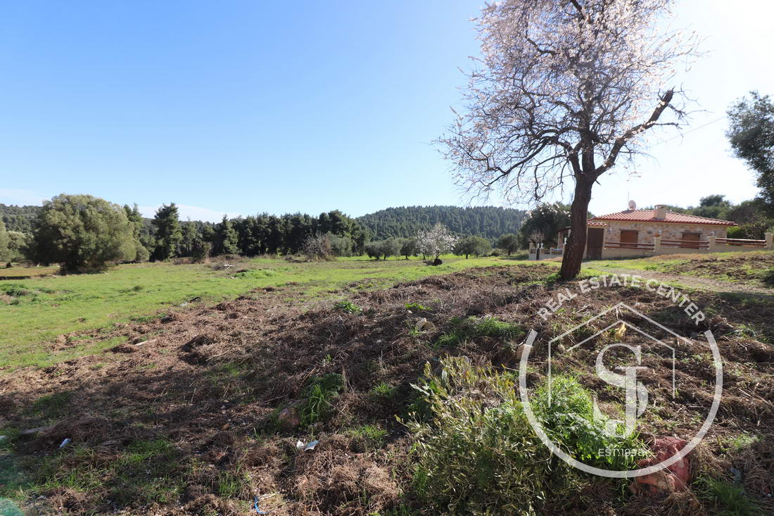 Land For Sale Paliouri, Walk Into Town!!