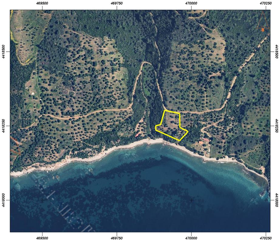 Prime Land 5900 sq.m. Sea front Paliouri!!
